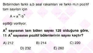 Bölme-ebob-ekok2-7
