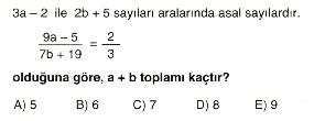 sayilar-testi2-7