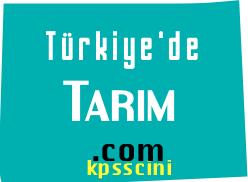 Türkiye'de Tarım Testi Çöz 1